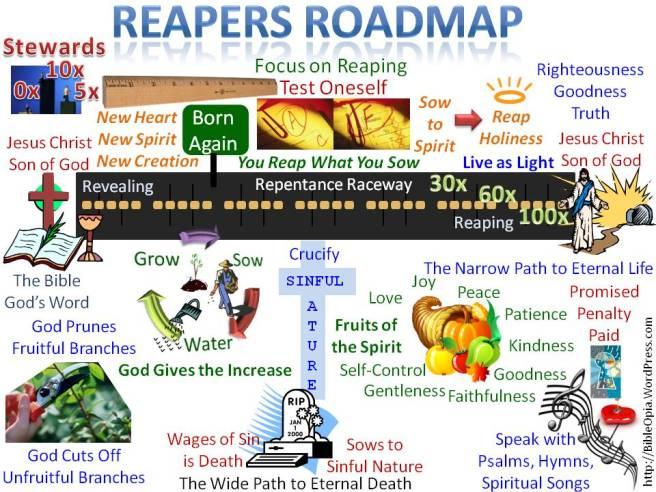 reapers-roadmap-focus-on-reaping-visual