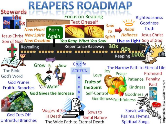 reapers-roadmap-focus-on-reaping-visual
