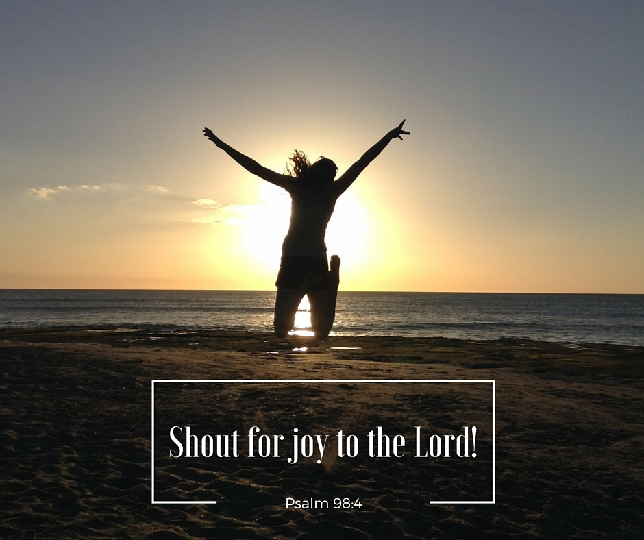 Welcome to the Van Zoest family blog: Shout for Joy to the Lord!